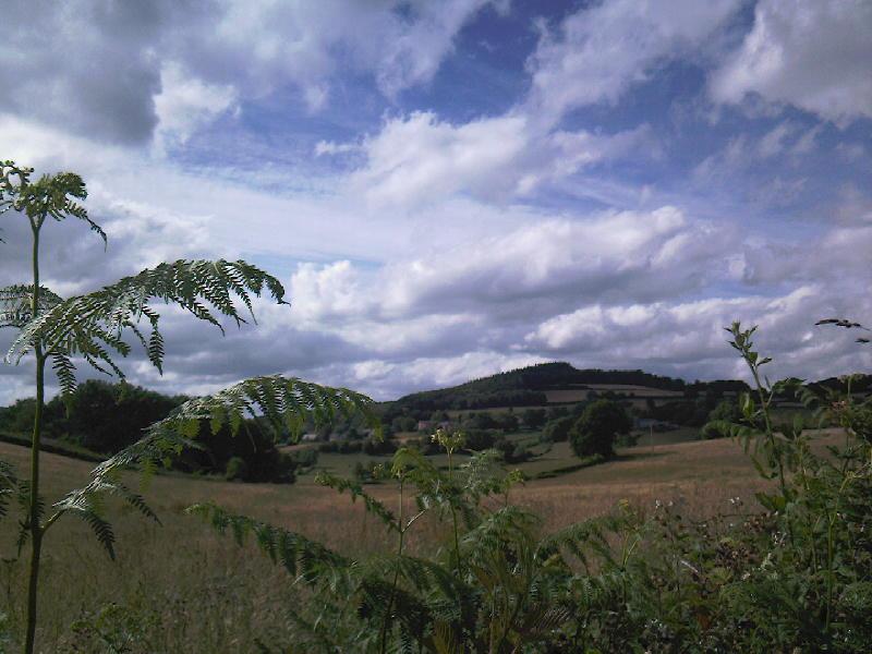 omgeving Brassy